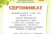 Сертификат - ЧиП-2020